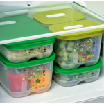 Most Commonly Used Storage Containers in Fridges