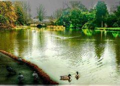 A Tourist Eye view of Cheltenham