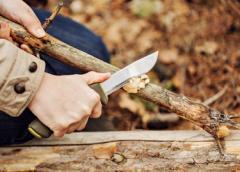 Why we should all learn bushcraft skills
